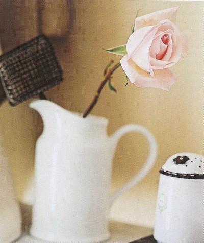 Flower_1_blog